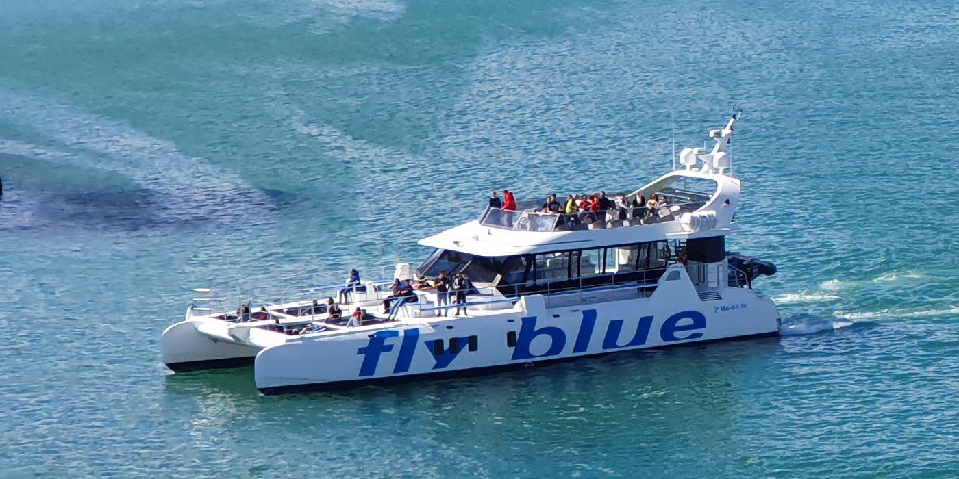 catamaran marbella malaga paseos barco
